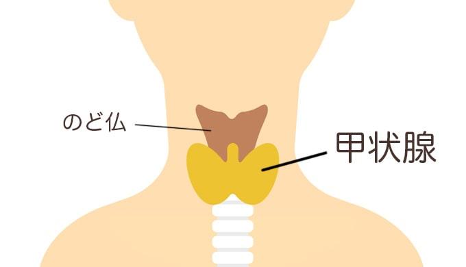 甲状腺機能低下症