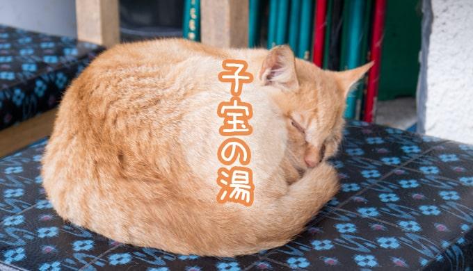 高温期11日目_子宝の湯