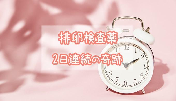 排卵検査薬_妊活