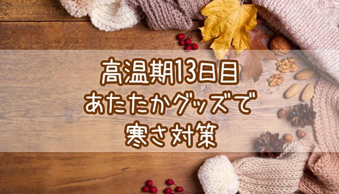 高温期13日目_妊娠検査薬