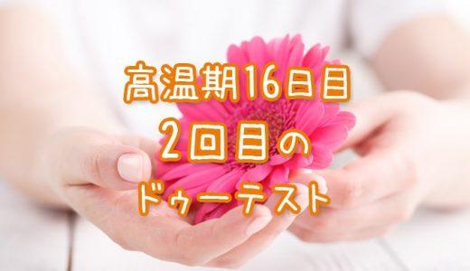 高温期16日目 妊娠検査薬 ドゥーテストの再検査