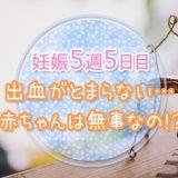 妊娠_5w5d_妊活