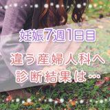 妊娠_7週_流産_妊活