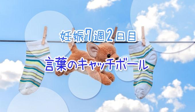 妊娠7週_流産_妊活